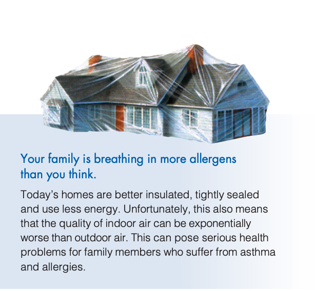 home allergens